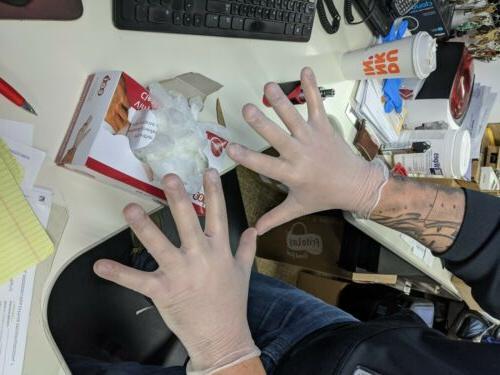 1000 Powder Free gloves Foodservice