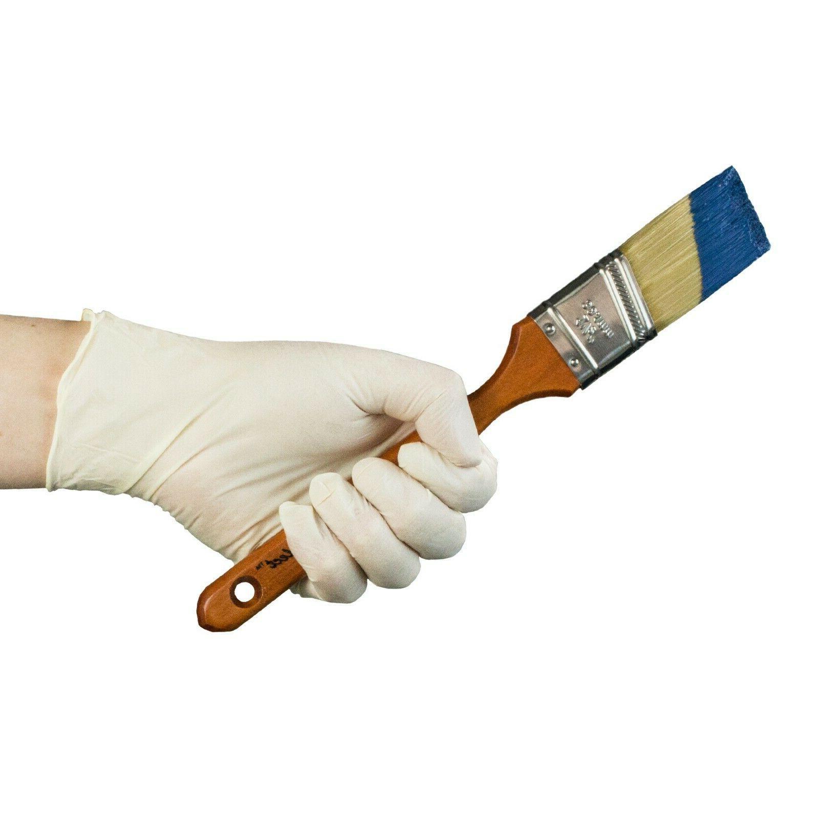 AMMEX Disposable Powder-Free Gloves